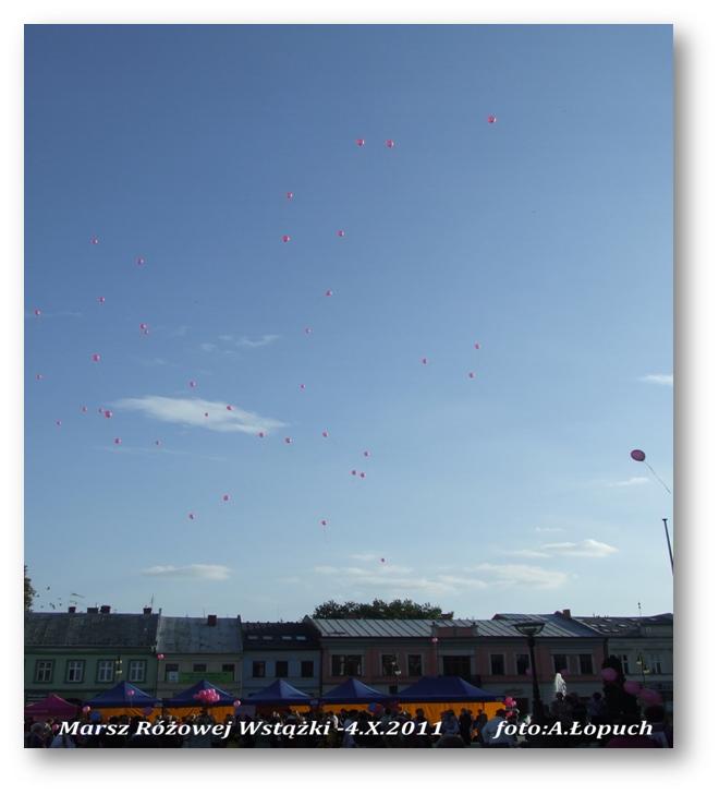 2011fot14